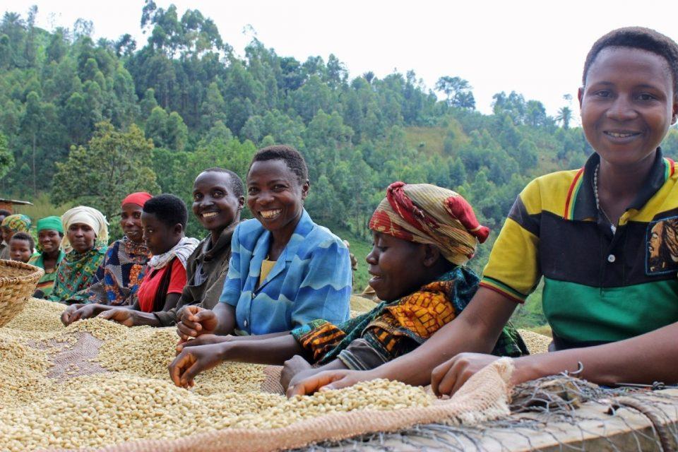 Coffee Export Capability Assessment Rwanda & Burundi
